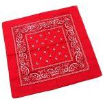 27001 bandana red